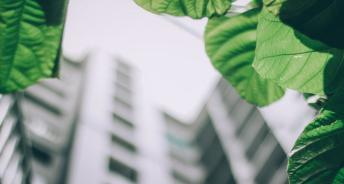 Green Building Labels im Aufwind (c) Pexels, Foto Arun Thomas